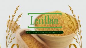 lecithin (1)